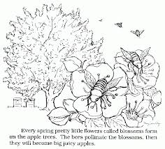 Tuttle Orchards Coloring Book Pages