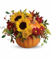 Teleflora's Pretty Pumpkin Bouquet In High Point, NC | Llanes Flower Shop,  LLC Save 50 On Valentines Day Flowers From Teleflora Saloncom Ticwatch E Promo Code Coupon Fraud Cviction Discount Park And Fly Ronto Asda Groceries Beautiful August 2018 Deals Macy S Online Coupon Codes January 2019 H P Promotional Vouchers Promo Codes October Times Scare Nyc Luxury Watches Hong Kong Chatelles Splice Discount Telefloras Fall Fantasia In High Point Nc Llanes Flower Shop Llc