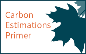 Define The Word Carbon Sink by Forests And Carbon Storage Climate Change Resource Center