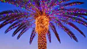 Delancey Street Christmas Trees Hours by Christmas Light Palm Tree Christmas Lights Decoration