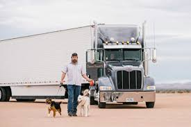 100 Road Dog Trucking Pets FamilyOwned Company In St Louis