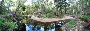 100 Lerderderg State Park Gorge Flood Damage