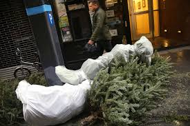 Nyc Christmas Tree Disposal by How To Get Rid Of Your Christmas Tree 2016 After Holiday When