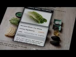 cuisine visuelle cuisine visuelle iphone 240 recettes visuelles à cuisiner