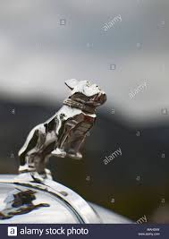 A Chromed Mack Bulldog Hood Ornament On The Front Of A Mack B-75 ... Antique Mack Truck Brass Hood Ornament Bulldog Mascot Emblem Statue Mack Truck Hood Ornament This And Trucks That Pinterest Tandem Thoughts Ok Its Really Christmas My Catalog Is Here Chrome 17837970 Vtg Mini 196070s Silver Tone Authentic Vintage Design A Chromed On The Front Of A B75 Mack Truck Small 87931 Hot Rat Collectors Weekly Rare Wired Red Light Up Eyes 3d Model In Parts Auto 3dexport