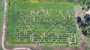 Pumpkin Patch Charlotte Nc Providence Rd by 5 Corn Mazes Within 30 Miles Of Uptown Charlotte Charlotte Agenda