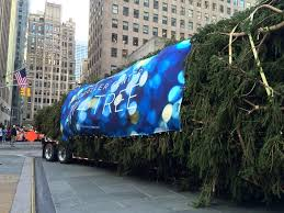 Rockefeller Plaza Christmas Tree Live Cam by Photo The Rockefeller Center Christmas Tree Arrives In New York