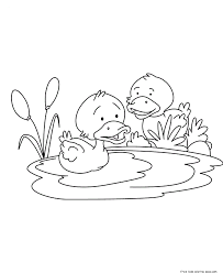 Printable Baby Duck Coloring Pages For KidsFree