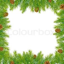 Frame With Christmas Tree And Pine Cone Vector Illustration