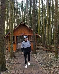 Galeri Foto Hutan Pinus Imogiri