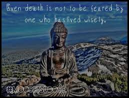 Buddha Quote Picture 5