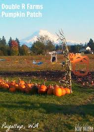 Kent Ohio Pumpkin Patches by Double R Farms Pumpkin Patch U2013 Puyallup Wa Puyallup Wa Farming