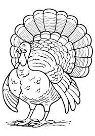 Turkey Coloring Pages 44