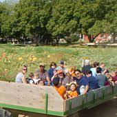 Wheatland California Pumpkin Patch by Wacky Willies Shaved Ice At Bishop U0027s Pumpkin Farm In Wheatland