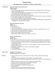 Download Branch Operations Resume Sample As Image File