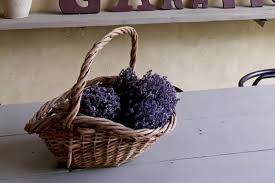 mauvaise odeur chambre éliminer les mauvaises odeurs dans la maison