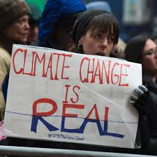Cabinet Level Agencies Are Responsible To by Why Trump U0027s Actions Are Making Scientists Nervous Teen Vogue