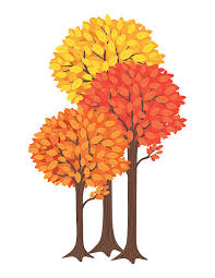 Three Fall Trees Yellow Orange And Red vector art illustration