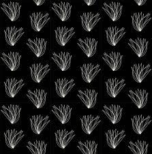 100 Architects Wings In Black Bird Charley Harper Birch Fabrics Organic Cotton Poplin By The Yard