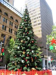 The Largest Christmas Tree In Southern Hemispher