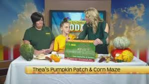 Fargo Moorhead Pumpkin Patches by North Dakota Today Thea U0027s Pumpkin Patch U0026 Corn Maze