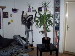 wohnzimmer s villa kunterbunt punkroiberin 4793