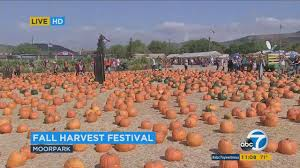 Monrovia Pumpkin Patch by 320 Million Corn Kernel Ball Pit Among Delights At Ill Pumpkin