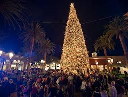 Fashion Island Tree A Guide To SoCals Lighting Ceremonies