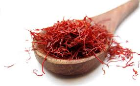of gold growing saffron