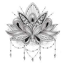Lotus Flower Drawing Sketch How To Draw Lotus Step By Step Easy