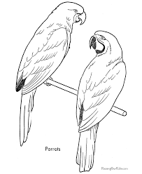 Free Printable Bird Coloring Pages 18
