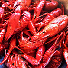 Crawfish On The Geaux - Baton Rouge Food Trucks - Roaming Hunger