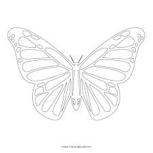 Monarch Butterfly Coloring Page Pages