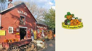 Central Wisconsin Pumpkin Patches by Vala U0027s Pumpkin Patch Momseveryday