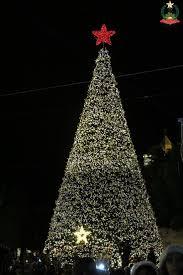 Bethlehem Lights Christmas Trees by 512 Best Jesus Sites Images On Pinterest Bethlehem Nativity And