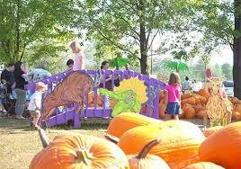 Pumpkin Patch Cincinnati by Shaw Farms