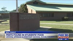 dcps pests found in food at jacksonville elementary school wjax tv