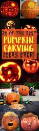 Electric Pumpkin Carving Tools Walmart by 17 Best Halloween Hacks Images On Pinterest 4 Kids Best Pumpkin