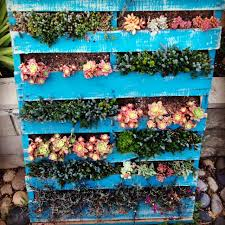 Pallet Succulent Garden We Made From An Old