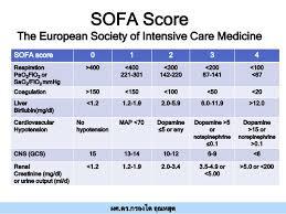 Quick Sofa Score Calculator by 10 Sofa Score Calculator Icu Sofa Score En Sepsis