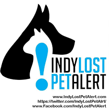 Indy Lost Pet Alert - Home | Facebook 2015 Chevrolet Silverado 1500 For Sale Nationwide Autotrader 16inchwestofpeoria Wondering How Far A Small Bicycle Can Go Craigslist Fools Gold Screenshot Your Ads The Something Awful Forums Boyd Automotive In Hendersonville Nc Asheville Columbus Porsche Cars A Rare 1989 Pontiac 20th Anniversary Turbo Trans Am Is For Chrysler Tc By Maserati Sale This Guy Has 13 25000 Ray Bobs Truck Salvage Immaculate 2008 Honda Civic Si Indiana Nasioc Dealership Indianapolis In Ford Fusion 46204 Best Ad Weve Seensince Last Week