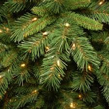 Popular Artificial Silver Tip Christmas Tree by The Holiday Aisle Tiffany Fir 7 5 U0027 Green Artificial Christmas Tree