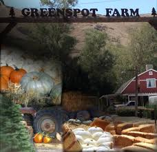 Oak Glen Pumpkin Patch Address by Greenspot Farms Mentone Ca Greenspot Farms Serving The Inland Empire