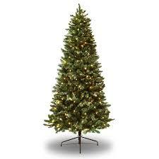 Realistic Artificial Christmas Trees Nz by Best 25 Douglas Fir Christmas Tree Ideas On Pinterest Douglas