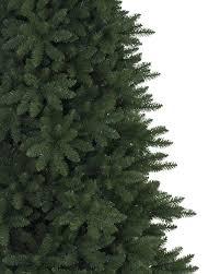 Fraser Fir Christmas Trees Kent by Berkshire Mountain Fir Christmas Tree Balsam Hill