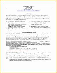 Inspirational Professional Profile Resume Examples New 51