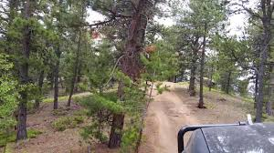 Colorado Springs Christmas Tree Permits by Rampart Range Fs Road 300u Teller County Colorado Youtube