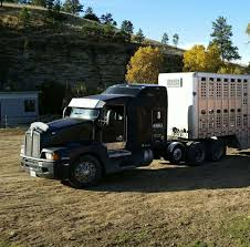 Krull Livestock Trucking - Home | Facebook Trucking The Worlds Best Photos Of 389 And Livestock Flickr Hive Mind About Metzger Agricultural Exemptions Instated For Regulations Pork Firms Worried Electronic Logging Device Could Hurt Henderson Jobs Otr Long Haul Truck Drivers West Land Cattle Hauler Jessica Lorees 2003 Pete 379 Livestockcattle Haulers Sale Llc Kenworth T800 With 4 Axle Tra Truck Spill Cleaned Up A Lot Help Krvn Radio Australian Livestock Rural Transporters Association