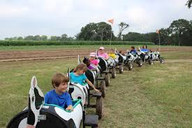 Pumpkin Patch Houston Oil Ranch by 15 Petting Zoos And Farms In And Around Houston Kid 101