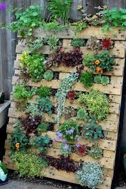 Succulent Pallet Gardenthese Are The BEST DIY Garden Yard Ideas